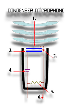 This is how a condenser microphone works