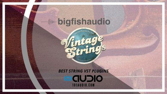 Big Fish Vintage Strings