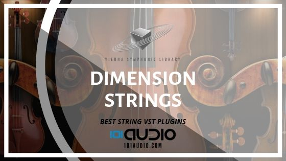 Vienna Dimension Strings