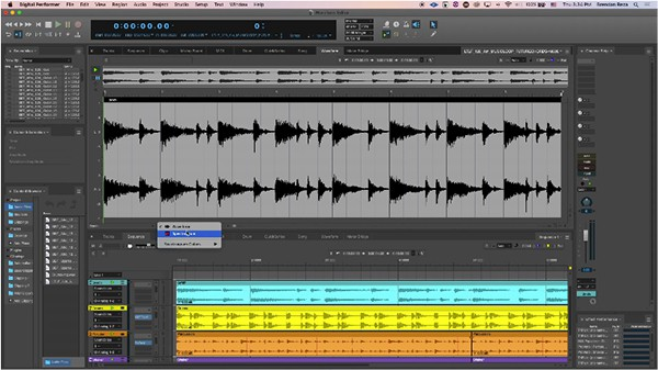 DP 10 Waveform Editor