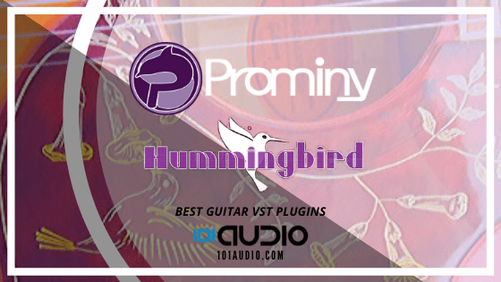 Prominy Hummingbird Acoustic Guitar
