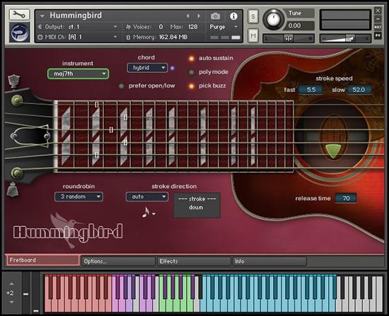 Hummingbird Fretboard